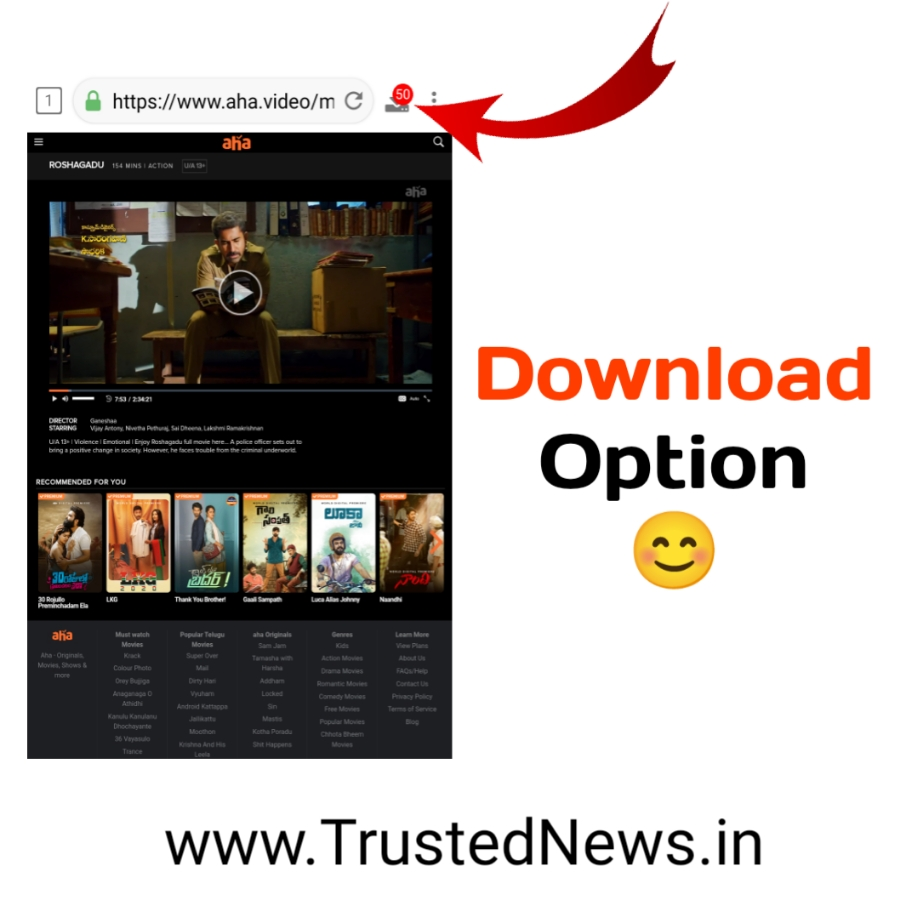 download videos form any website